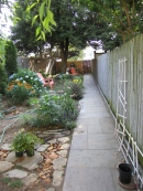 The view to the back gate. You can just see the arborvitea to the left.