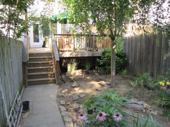 A view of the deck after removing two of the shrubs that used to hide the under-deck area. I just thought they were too formal, and I want that little extra planting space.