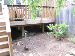 """Below the deck. I think the remaining shrub will come out and miscanthus """"Morning Light"""" will go in. I'm thinking of planting a """"Gloire de Dijon"""" climbing rose next year on the fence, either here or closer to the grassy area."""