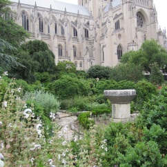 The Hortulus (Little Garden) with its herbs and Carolingian stone font.