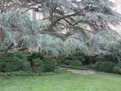 The Bishop's Garden