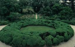 Boxwood ellipse before 2010. Photo via the Tudor Place Foundation website.