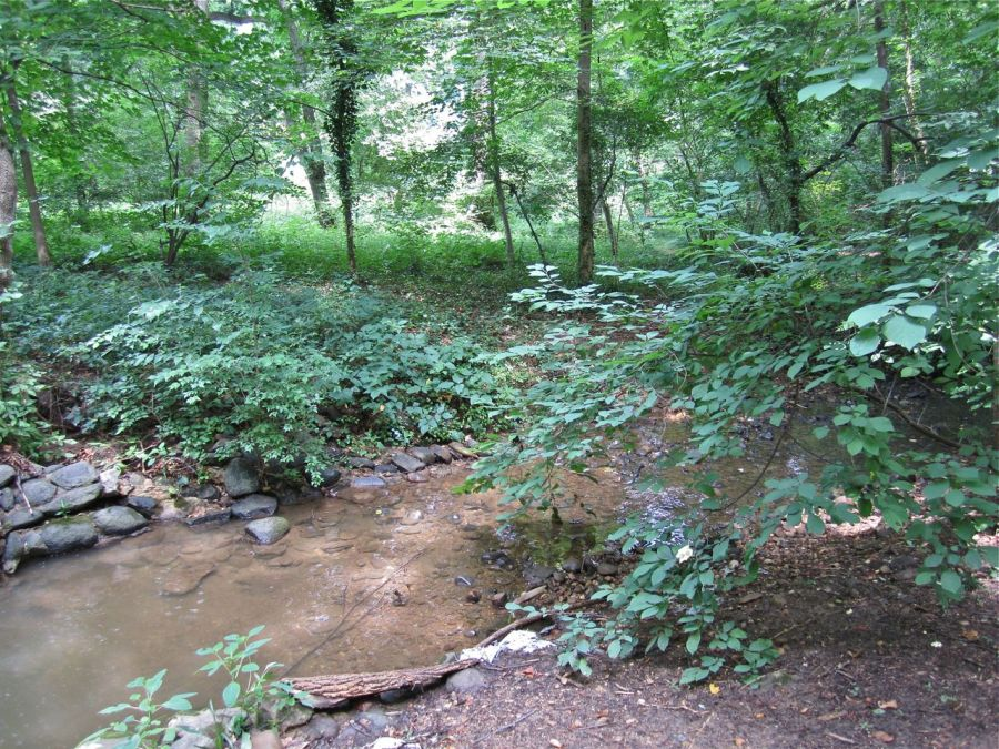 The stream, an unnamed tributary of Rock Creek Park.