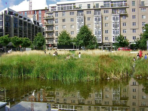 A summer camp visit to Tanner Springs Park in Portland, Oregon.