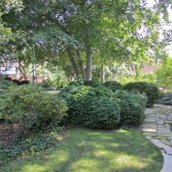 Paths bordered by beds of boxwood and azaleas weave along the back of the garden on the west side.