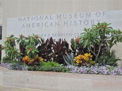 The main entrance with frangipani, agave, and canna.