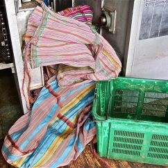 Colorful sacks at Sorwathe tea factory.