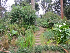 One of several paths through the deep planting beds.