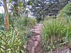 Volcanic lava rock paves the path.