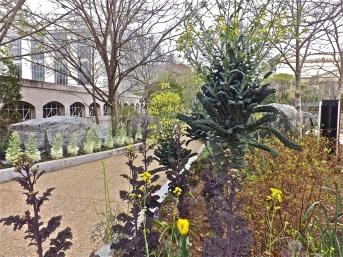 SI - butterfly garden 1