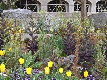 SI - butterfly garden 11