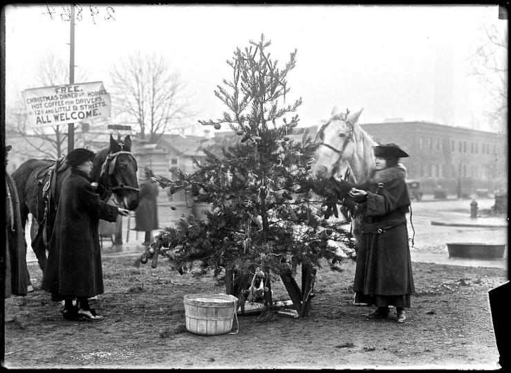 horse xmas tree 1918