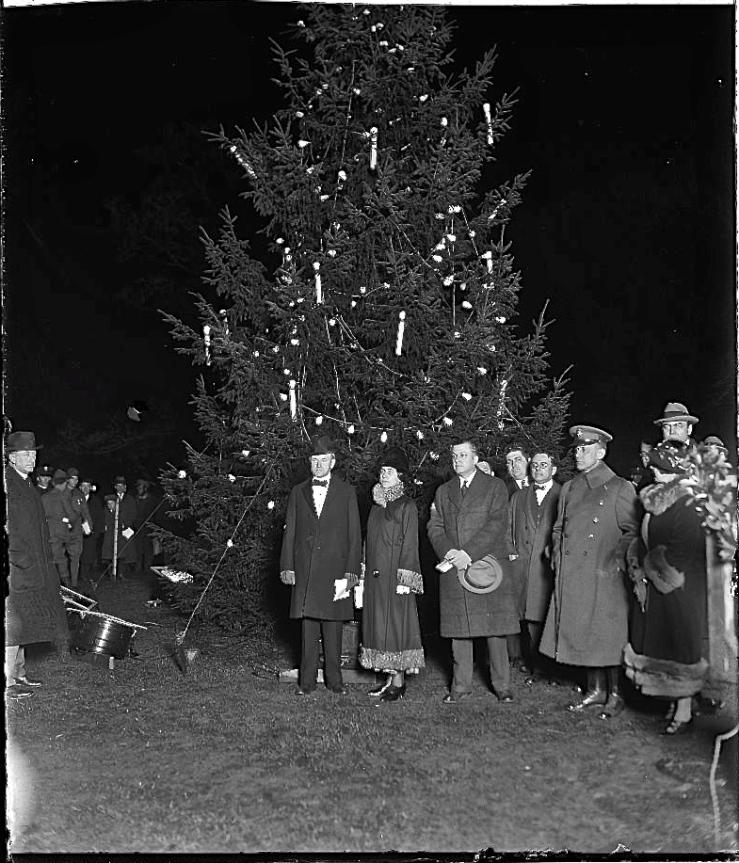 1924 tree lit, L0C