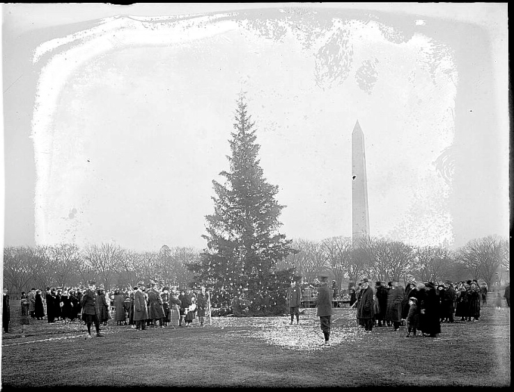 1923 tree, LoC