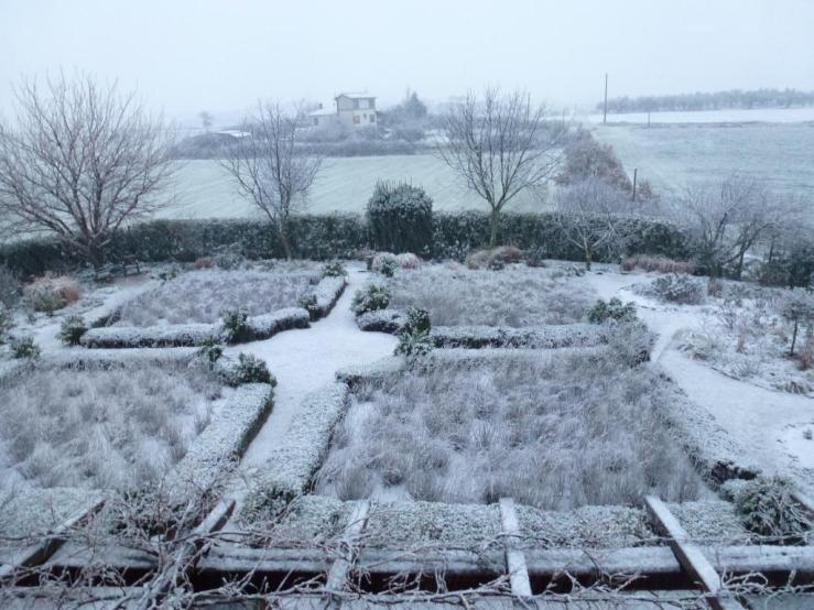 The garden after a January snow.