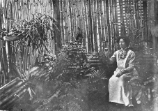 Florence Reid in a bamboo bush-house at Bainagowan Station, ca. 1900.
