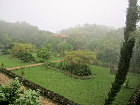 Sunken garden in the fog.
