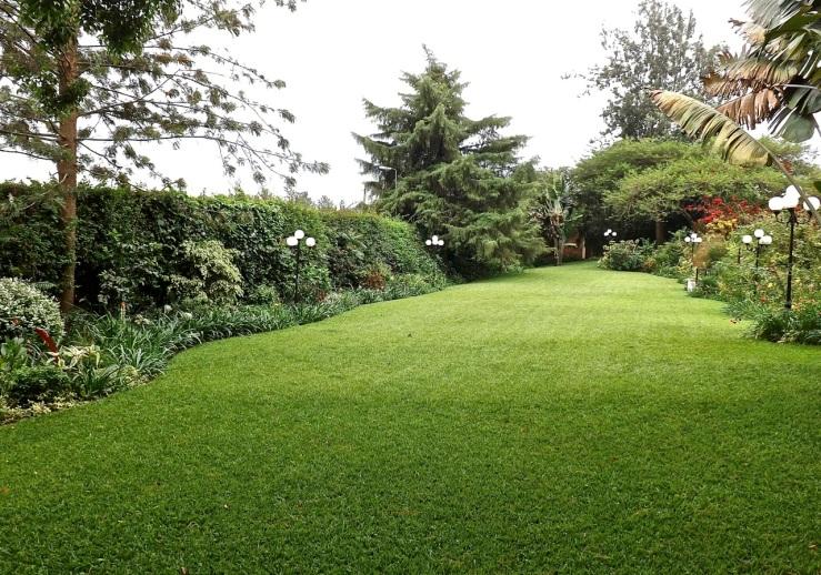 Our Kigali garden/ enclos*ure