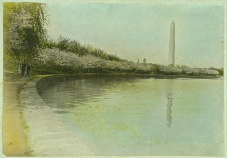Tidal Basin, Washington, DC, c. 1920