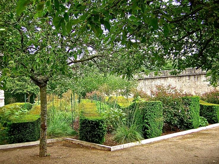 Blois garden/enclos*ure