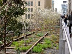 The High Line, NYC/enclos*ure