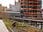 A H.L. gardener weeding and the new building of the Whitney Museum of American Art (due to open in 2015).