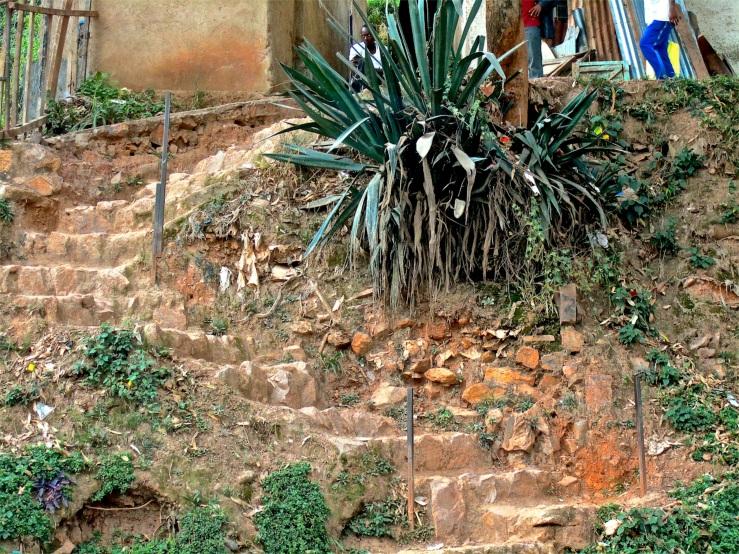 Detail of roadside steps, Kigali, Rwanda