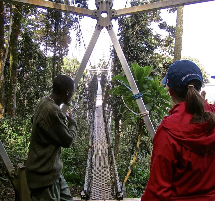 15a Canopy walk, Nyungwe Park, Rwanda:enclos*ure