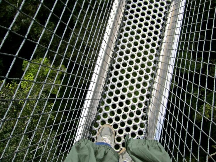 20 Look down, Canopy walk, Nyungwe Park, Rwanda:enclos*ure