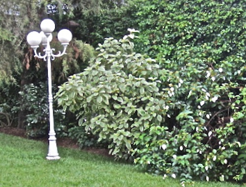 Our garden lightpost before painting/enclos*ure