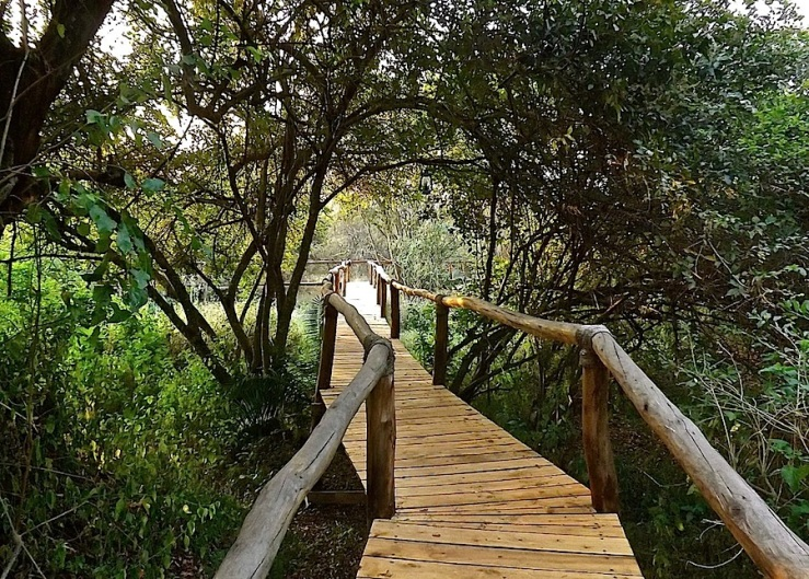 Boardwalk, Ruzizi Tented Lodge, Akagera National Park, Rwanda:enclos*ure