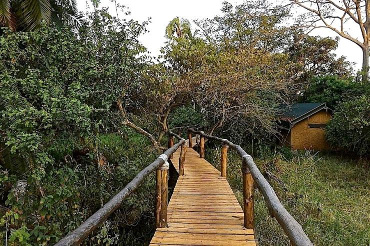 Boardwalk to tent, Ruzizi Tented Lodge, Akagera Natl. Park in Rwanda:enclos*ure