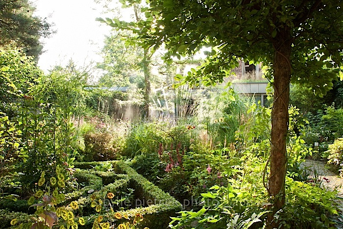 Small urban garden by Sibylle Pietrek, Gartenblick/enclos*ure