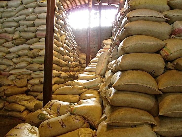 Coffee sacks stairs, Rwanda Trading Company:enclos*ure