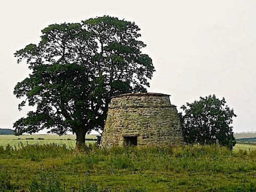 Restored medieval dovecoat, near Buckton, Northumberland, by Graham Robson.