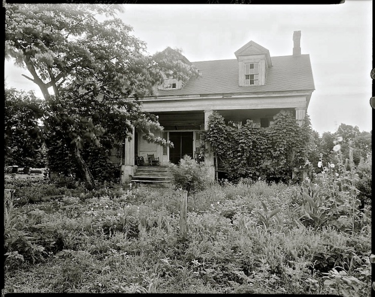 Vintage Photo of Strawberry Hill, Forkland vic., Greene County, Alabama, via Library of Congress Prints and Photographs Division