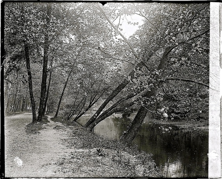 Rock Creek Park, Washington, D.C., ca. 1918-20, Natl. Photo Co. Collection, Library of Congress