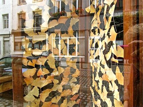 Gallery in Dansaert, Brussels/enclos*ure