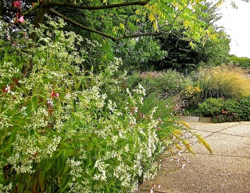 The garden sections mimic habitats important to the insects: