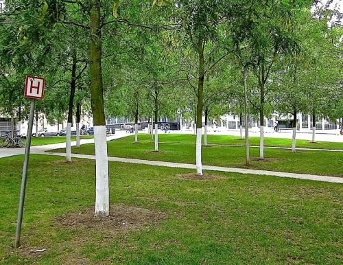 3 Brussels park:enclos*ure