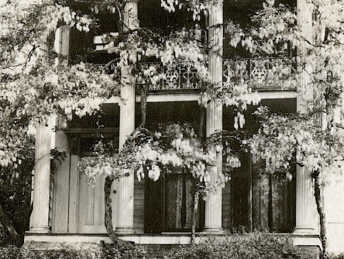 Wisteria House detail, 1919, via Smithsonian Institution Commons