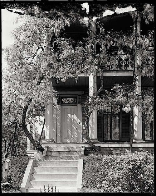 Wisteria House, Harris & Ewing photo