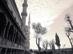 The garden of the Blue Mosque.
