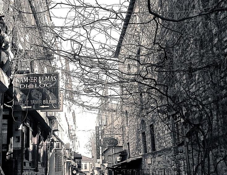 Vines over a street in the Bazaar District.