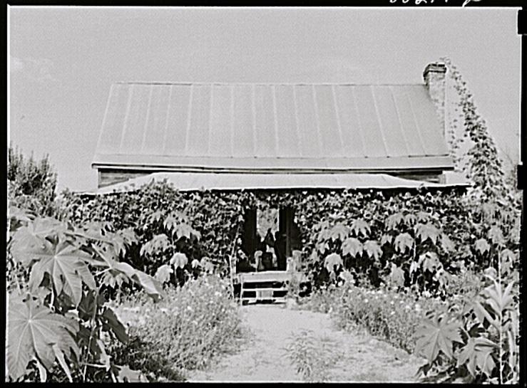 Drigger home, 1941 Coffee Co., Alabama, via Library of Congress