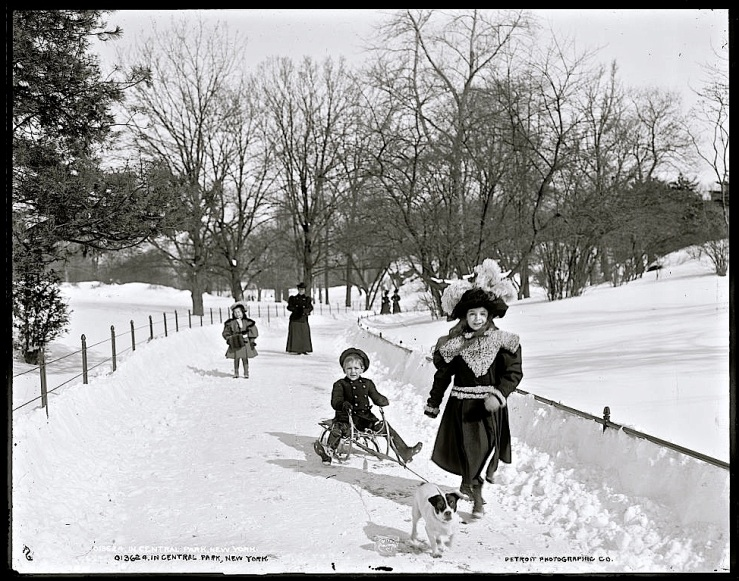 Vintage landscape/enclos*ure: snow in Central Park, c. 1900, via Library of Congress