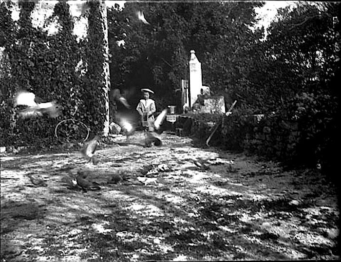 Bebe et les pigeons, Belesta, 1897, flickr Commons