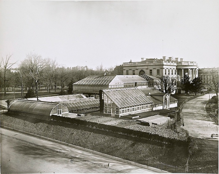 The greenhouses in 1889 by Frances Benjamin Johnston.