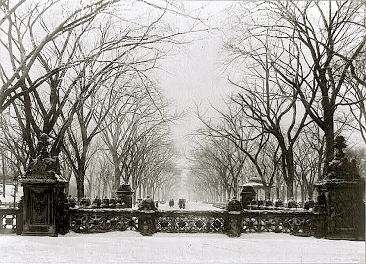 Vintage Landscape:enclos*ure -- Central Park, 1906, via Library of Congress