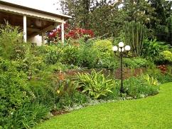 A walk around our garden in Rwanda/enclos*ure